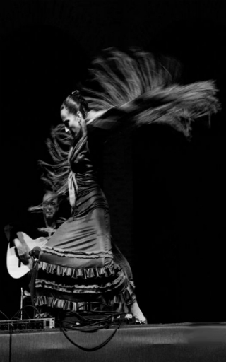 espectaculo flamenco en Alicante