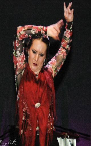 flamenco Alicante
