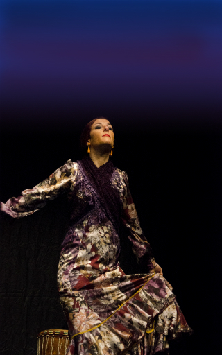 tablao flamenco Alicante