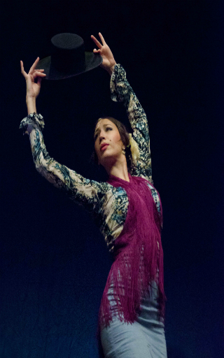 spectacle flamenco Alicante